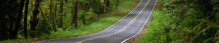 cropped-large-country-road1.jpg